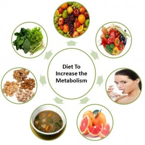Diet To Increase the Metabolism