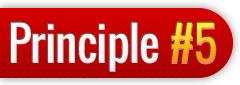 principle51